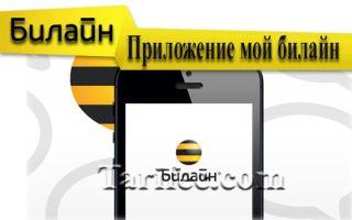 Приложение «Мой Билайн» — личный кабинет и система оплаты